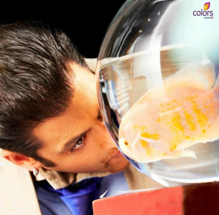 Salman Khan On Bigg Boss Season 6