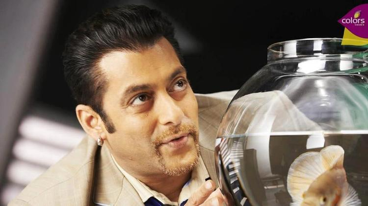 Salman Khan Photo Shoot For Bigg Boss Season 6