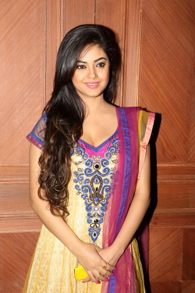 Meera Chopra Spicy Cleavage Show Photo