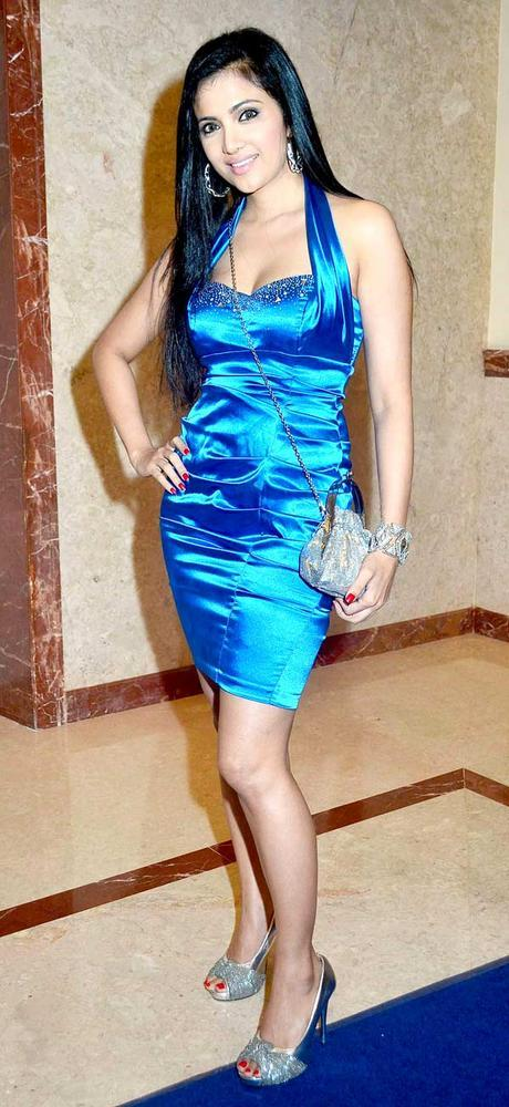 Shilpa Anand Clicked For Pose At The Saas Bahu Aur Saazish Success Bash