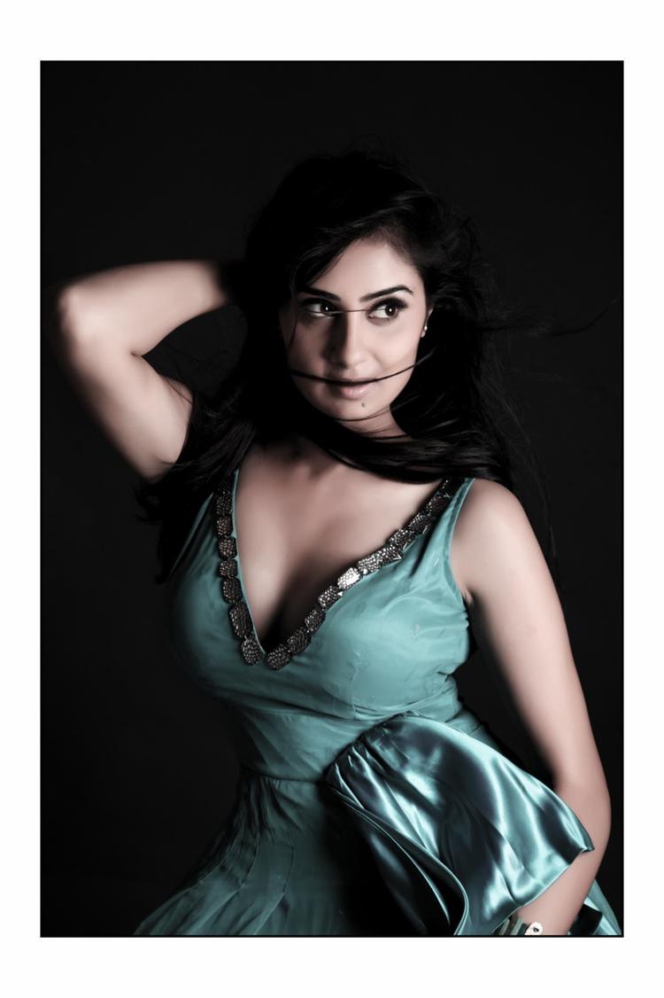 Bhanu Sri Mehra Hot Look Still