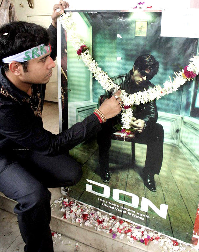 A Fan Worships SRK Photo