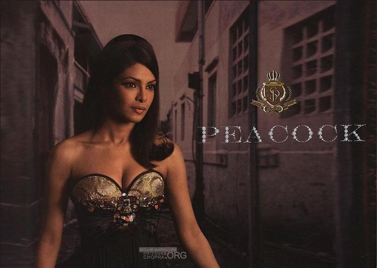 Priyanka Hot Photo Shoot In Falguni And Shane Peacock Design Dress