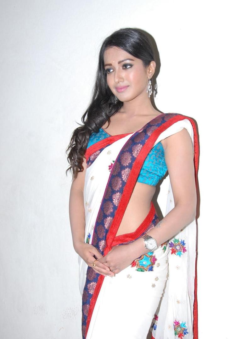 Catherine Looked Hot Gorgeous In Saree At Chammak Challo Audio Release Function