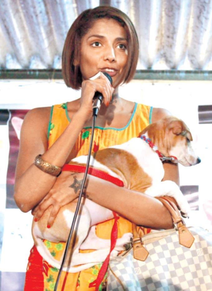 Diandra Soares Snapped In A Dog Friendly Event