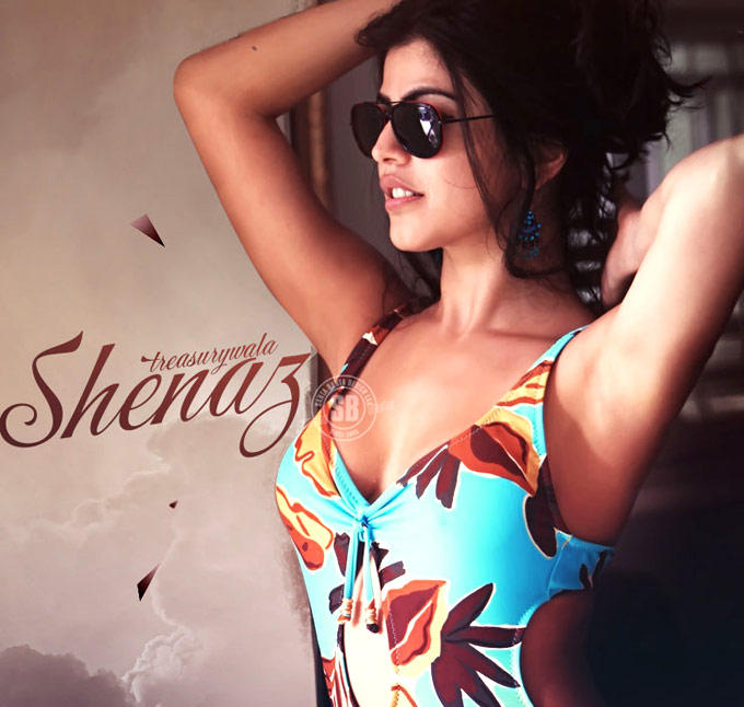 Shenaz Treasurywala Sizzling And Attractive Photo In Swimsuit