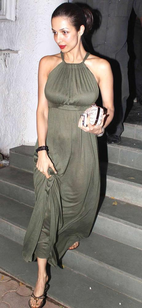 Malaika Looked Marvelous In A Gown At Alvira Khans Birthday Bash