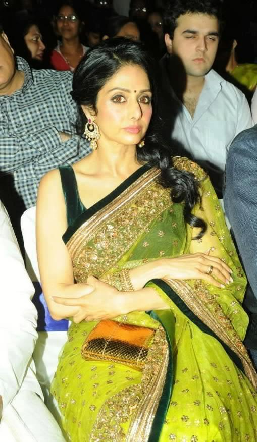 Sridevi Kapoor Dazzles At The Inauguration Of The INOX Theater
