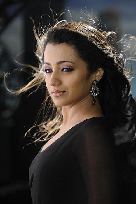 Trisha Sizzling And Dashing Photo Shoot In Black Saree