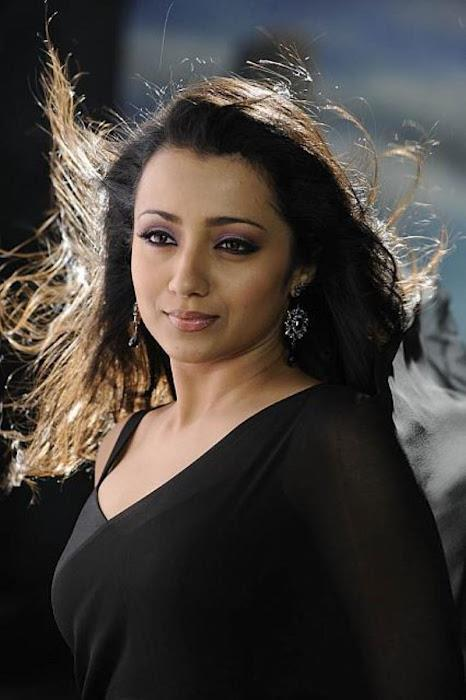 Trisha Spicy Photo Shoot In A Black Color Saree