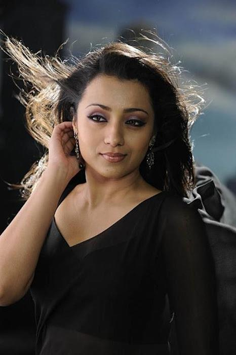Trisha Trendy Looking Photo Shoot In Black Saree