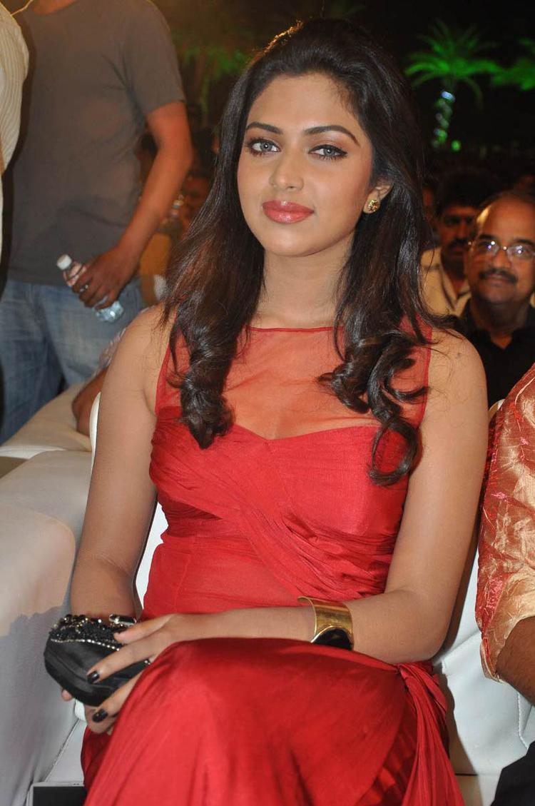 Amala Posed For Camera At Naayak Audio Release Function