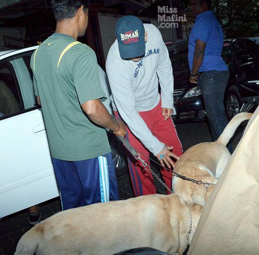 Salman With His Dog At Dabangg 2 Screening Event