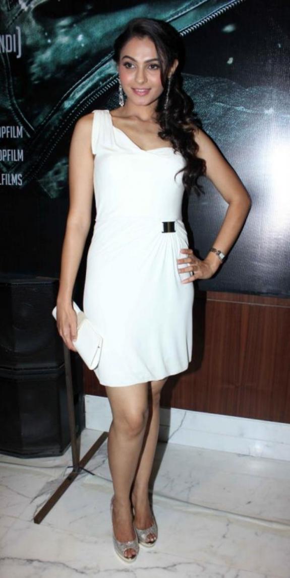 Andrea Gorgeous Look Photo Clicked At Vishwaroop Hindi Movie Press Meet