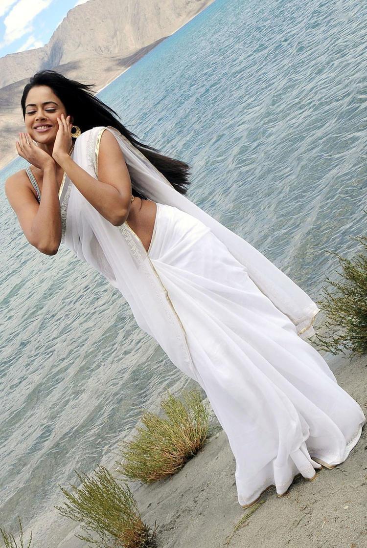 Sameera Reddy In White Saree Cool Still