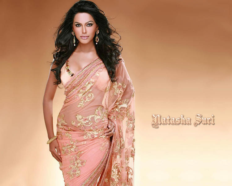 Natasha Suri Sexy Transparent Saree Wallpaper