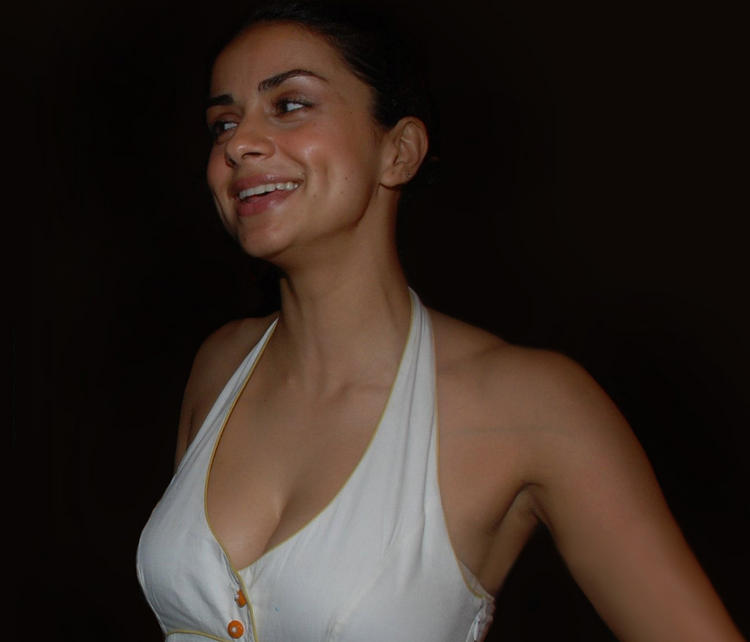 Dimple Beauty Gul Panag Smile Face Wallpaper