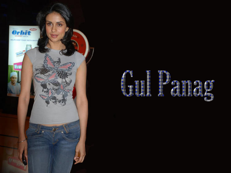 Feet Gul Panag Wallpaper