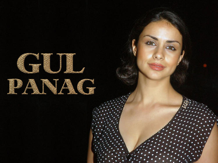 Gul Panag Glam face Wallpaper