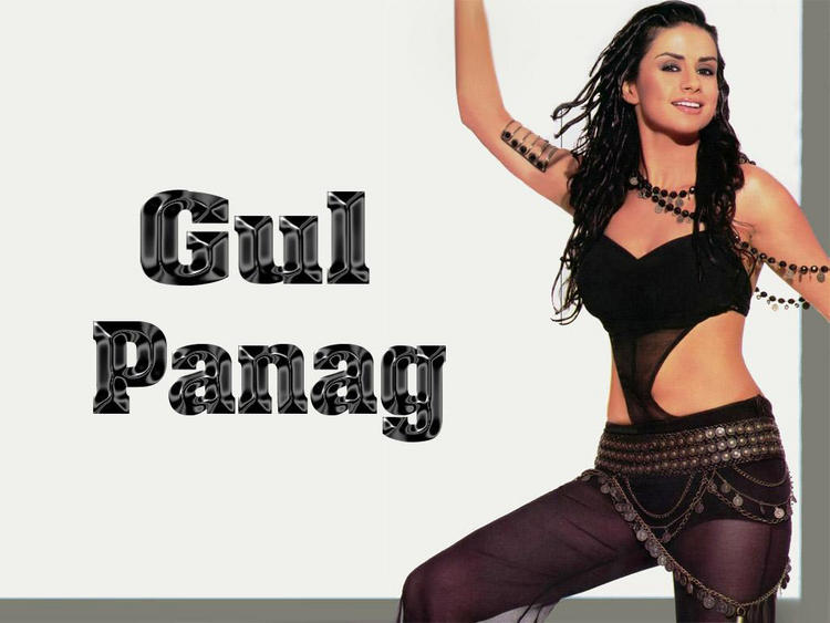 Gul Panag Hot Dress Wallpaper