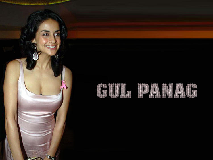 Gul Panag Sexy Cleavages Hot Wallpaper