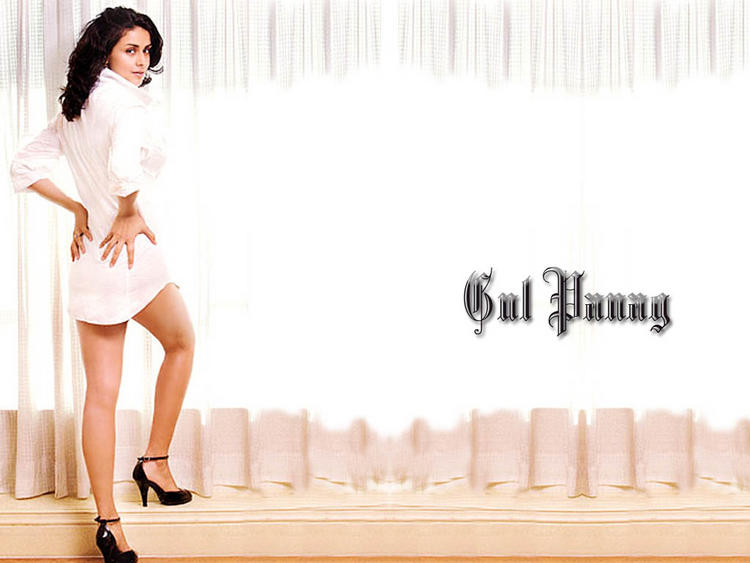 Gul Panag Spicy Hot Wallpaper