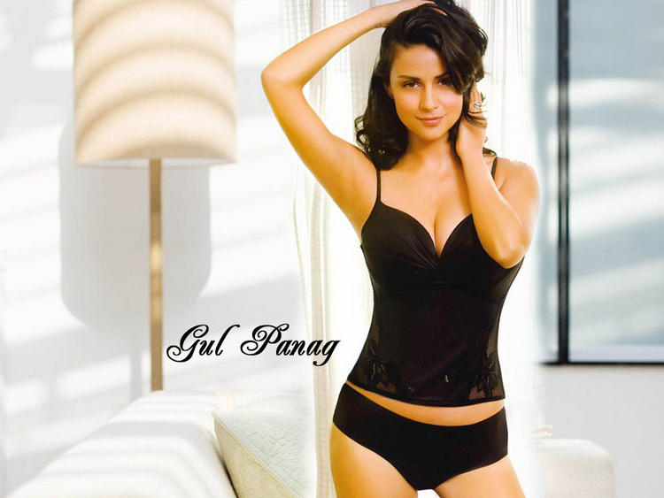 Gul Panag Two Piece Dress Sexy Wallpaper