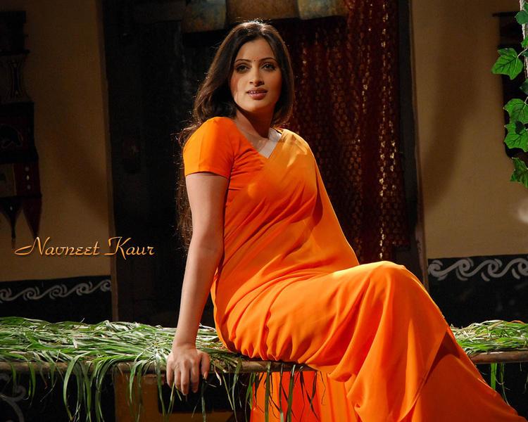 Hot Babe Navneet Kaur In Saree