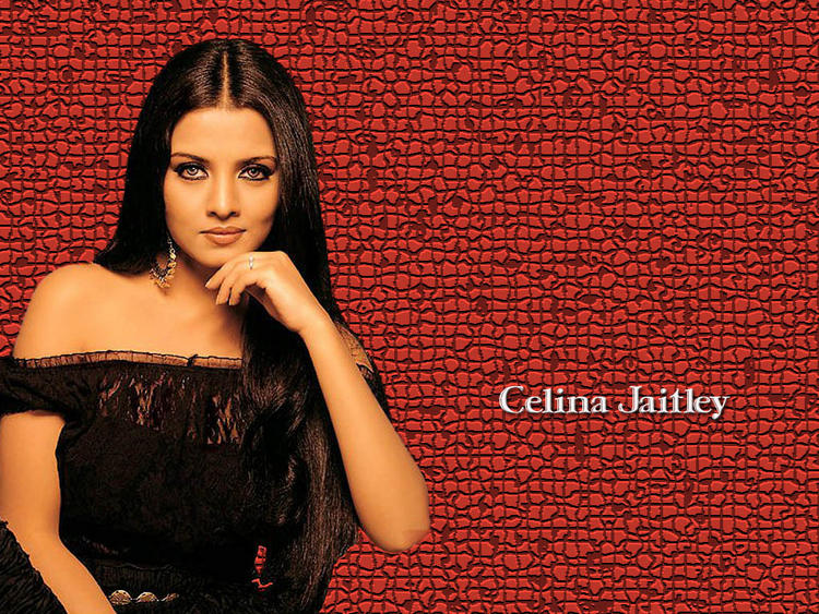 Cat Eyes Beauty Celina Jaitley Wallpaper