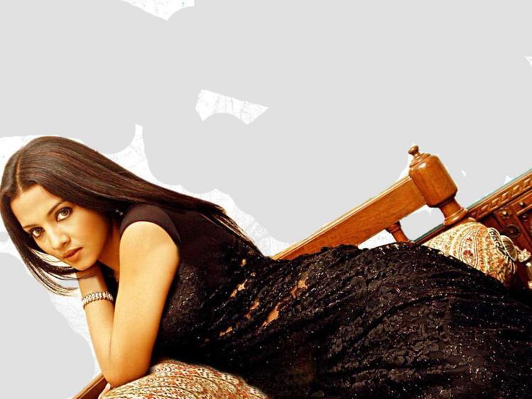 Celina Jaitley Beauty Gorgeous Face Wallpaper