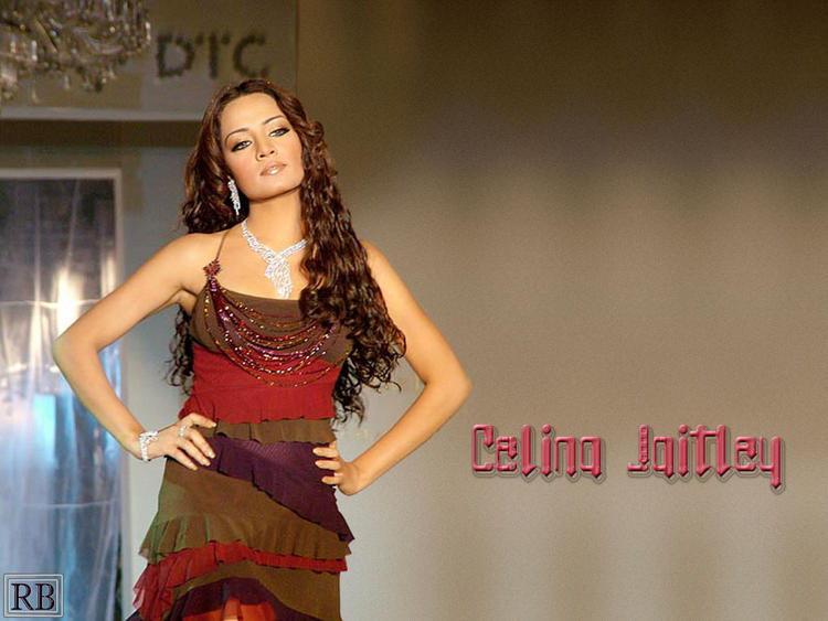 Celina jaitley Curly Hair Sexy Wallpaper