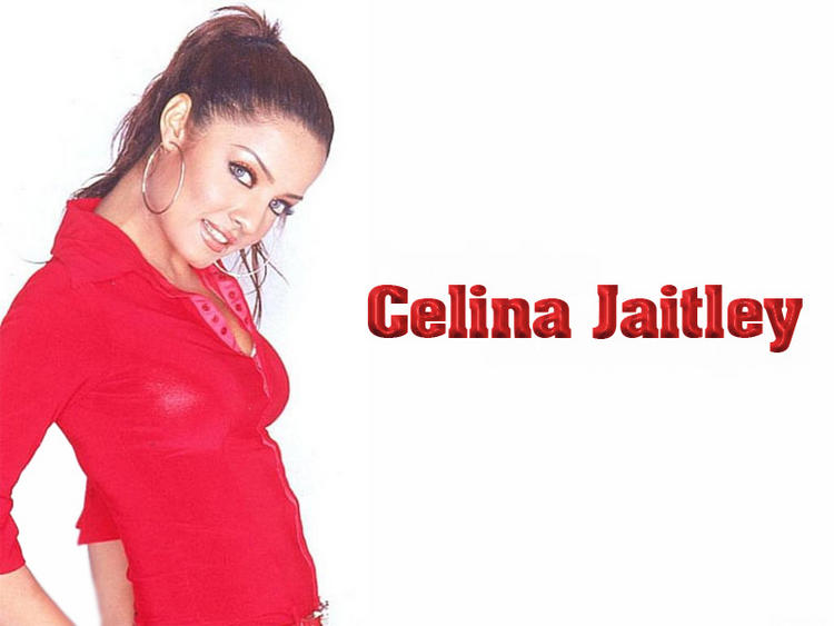Celina Jaitley Cute face Wallpaper