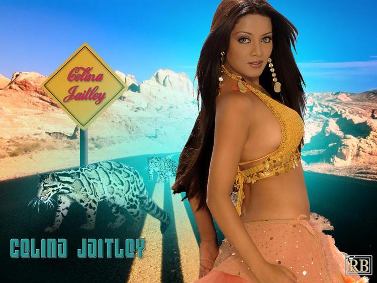 Celina Jaitley Sexy Hot Cute Wallpaper
