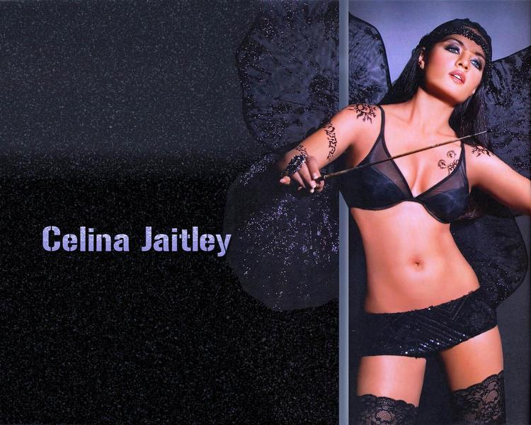 Celina Jaitley Shocking Body Wallpaper