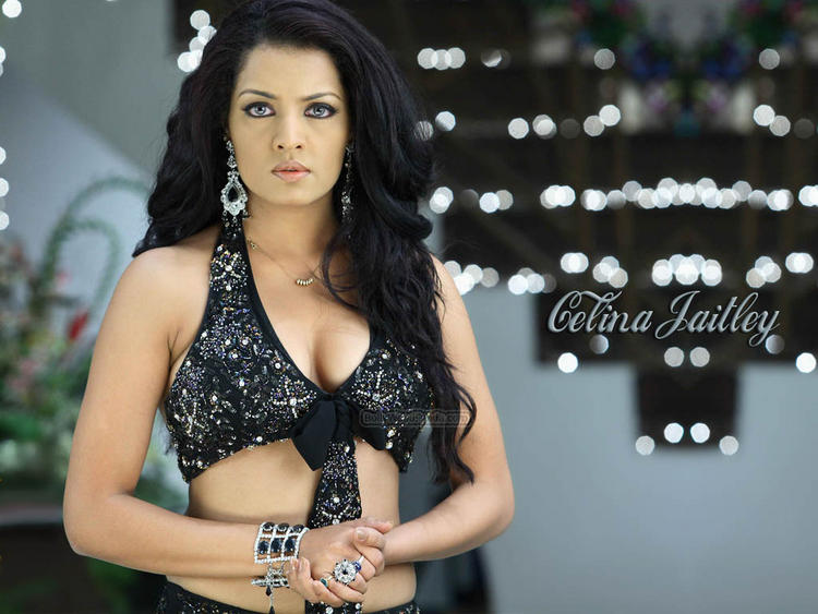 Celina Jaitley Sizzling Hot Sexy Look