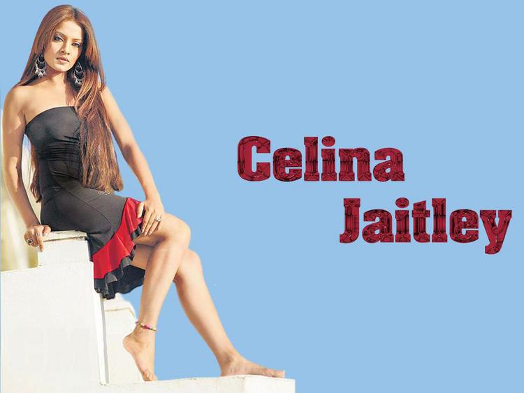 Celina Jaitley Sleeveless Dress Stunning Wallpaper