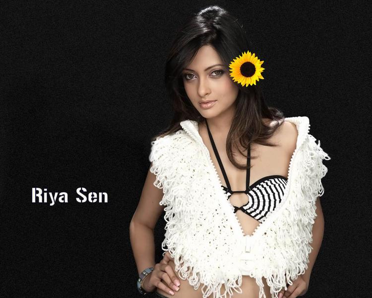Riya Sen Bikini Hot Wallpaper