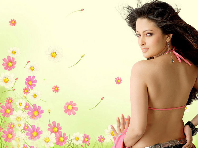 Riya Sen Sexy Back Bare Wallpaper