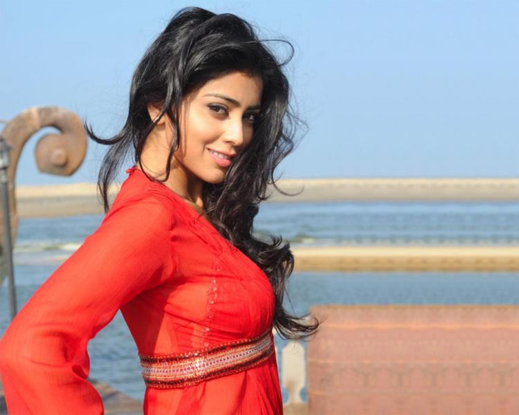 Shriya Saran Stunning Wallpaper