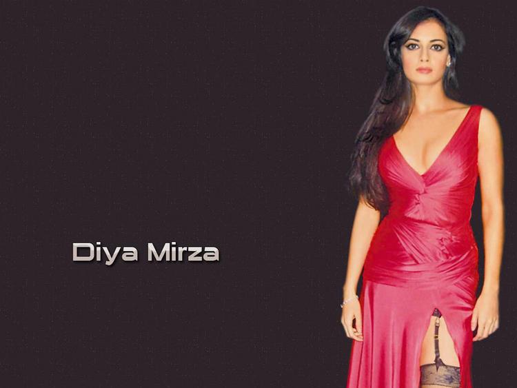 Diya Mirza Gorgeous Wallpaper