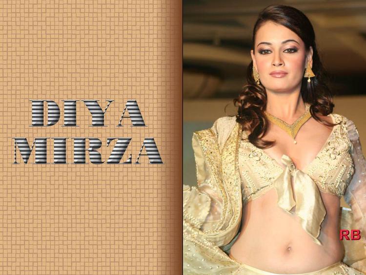 Diya Mirza Hot Navel Show Wallpaper