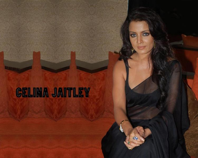 Celina Jaitley Black Transparent Saree Wallpaper