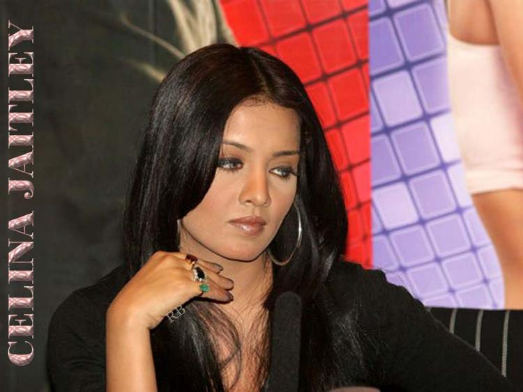 Celina Jaitley Cool Look Wallpaper