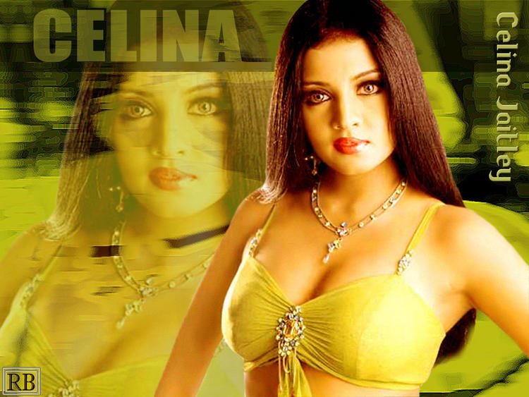 Celina Jaitley Latest Gorgeous Wallpaper