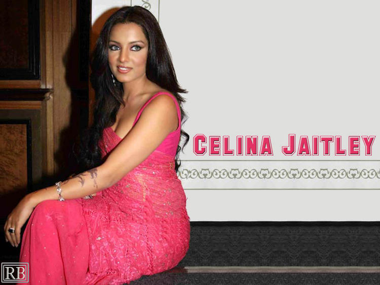 Celina Jaitley Pink Gorgeous Dress Wallpaper