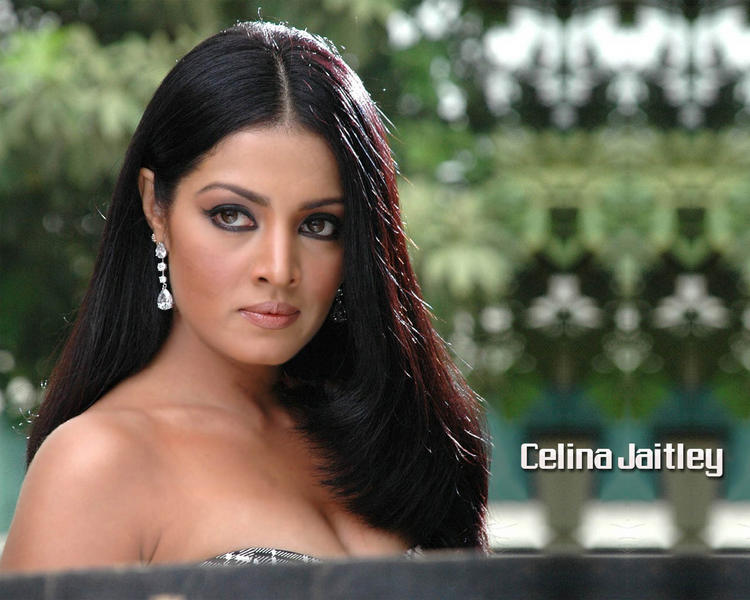 Celina Jaitley Sexy look Wallpaper