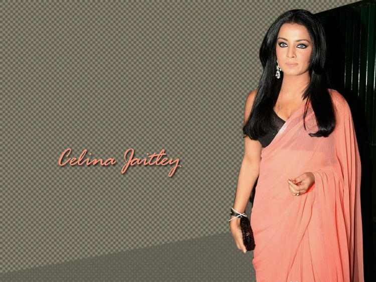 Hot Babe Celina Jaitley  In Saree