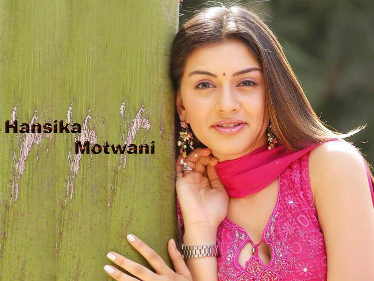 Hansika Motwani Stunning Wallpaper