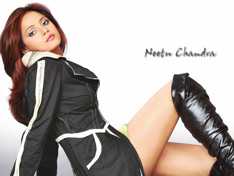Glorious Neetu Chandra Hot Wallpaper