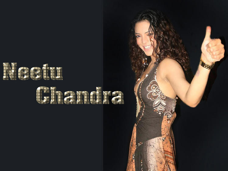 Neetu Chandra Curly Hair Style Wallpaper